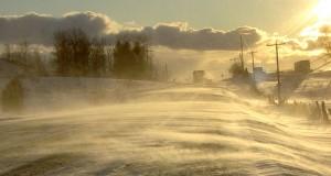 В Ленобласти ожидается сильный ветер.