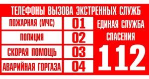 В Санкт-Петербурге зафиксирован сбой в работе телефонов экстренных служб