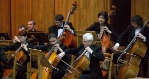 Восприятие музыки связано с биологическими и эволюционными процессами