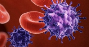Сладкое способно помочь бороться с ВИЧ