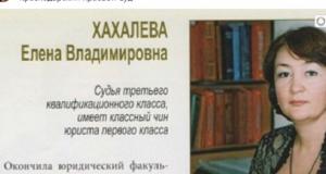 Судья Елена Хахалева вычистила рунет за 20 миллионов